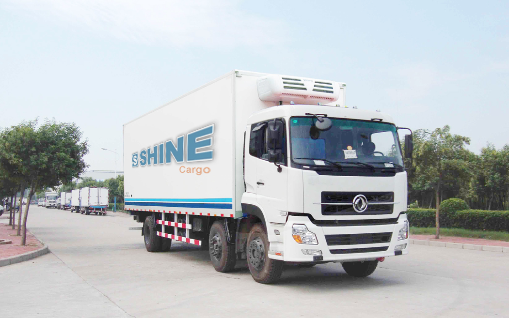 shine-cargo-Frozen Food